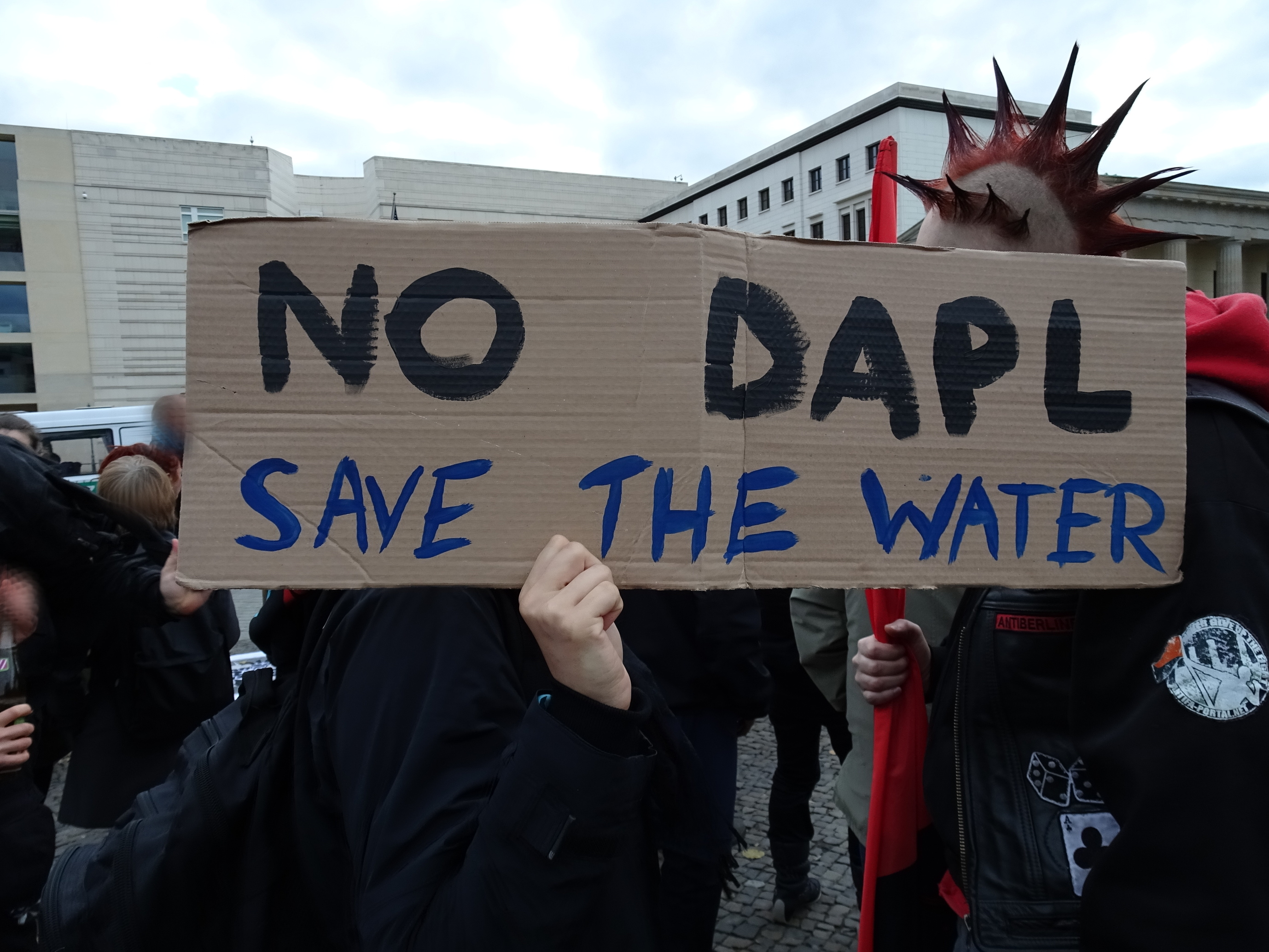 No DAPL - Save the Water!